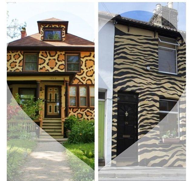 Leopard Zebra House Dream House Pinterest House