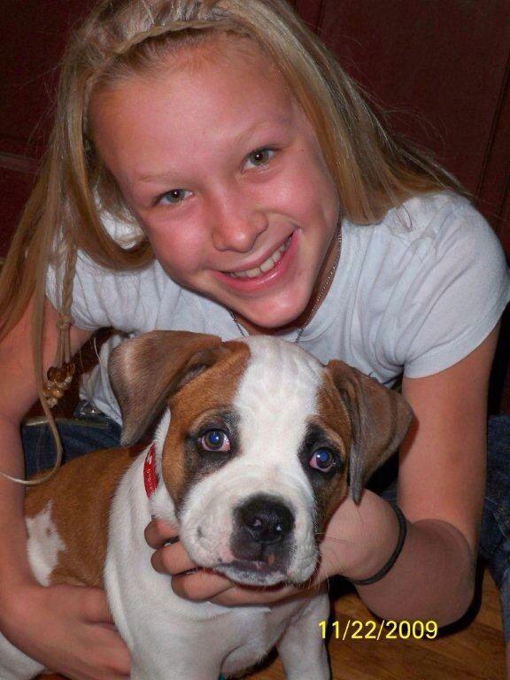 American Bulldog Strong Muscular Cute Dog Smiley Bully Bulldogge