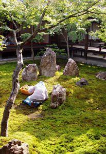 Japanese garden design principles Garden Pinterest Japanese