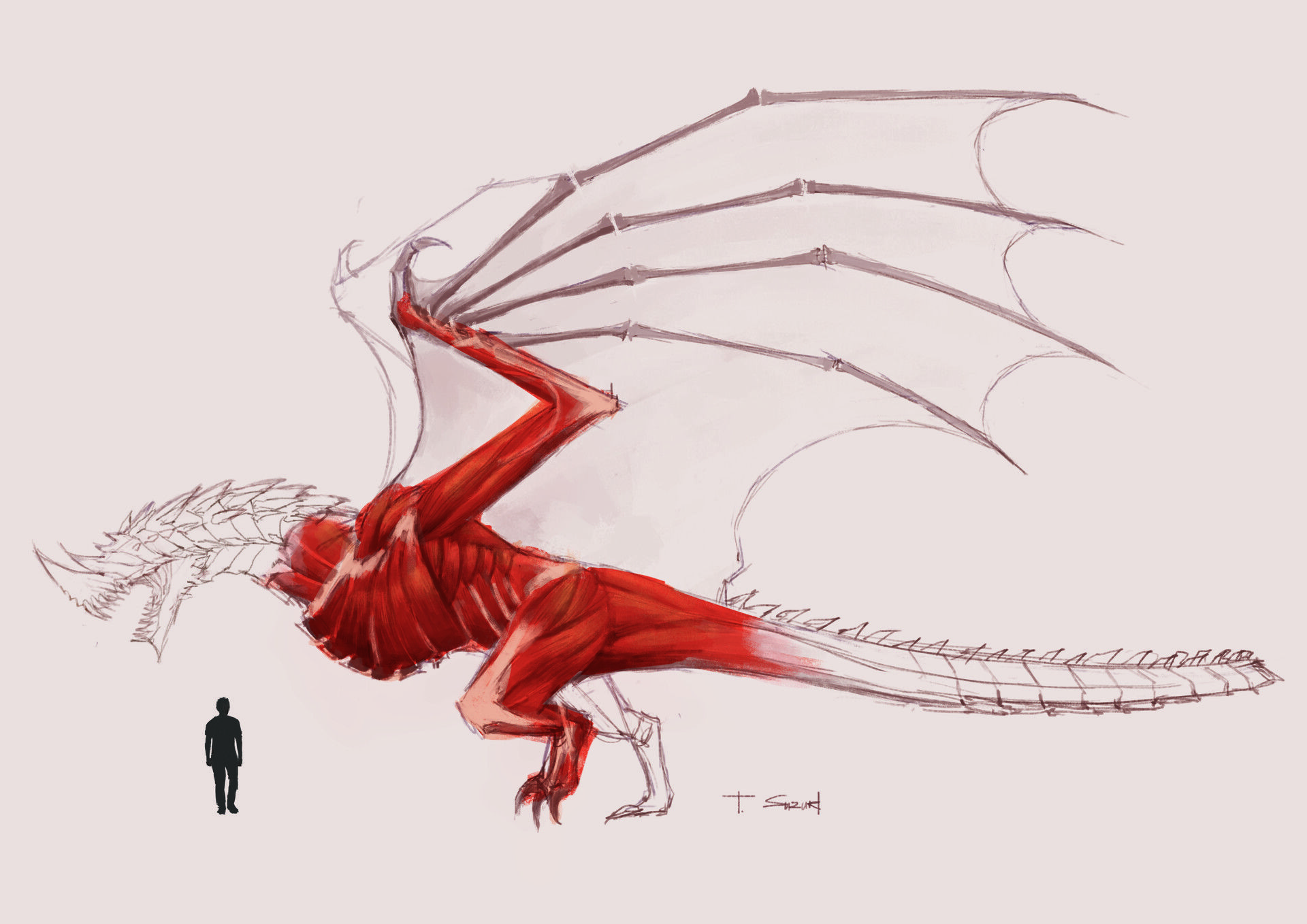 Pin By Cee Dee On Dragons Dragon Sketch Dragon Sculpture Dragon Anatomy