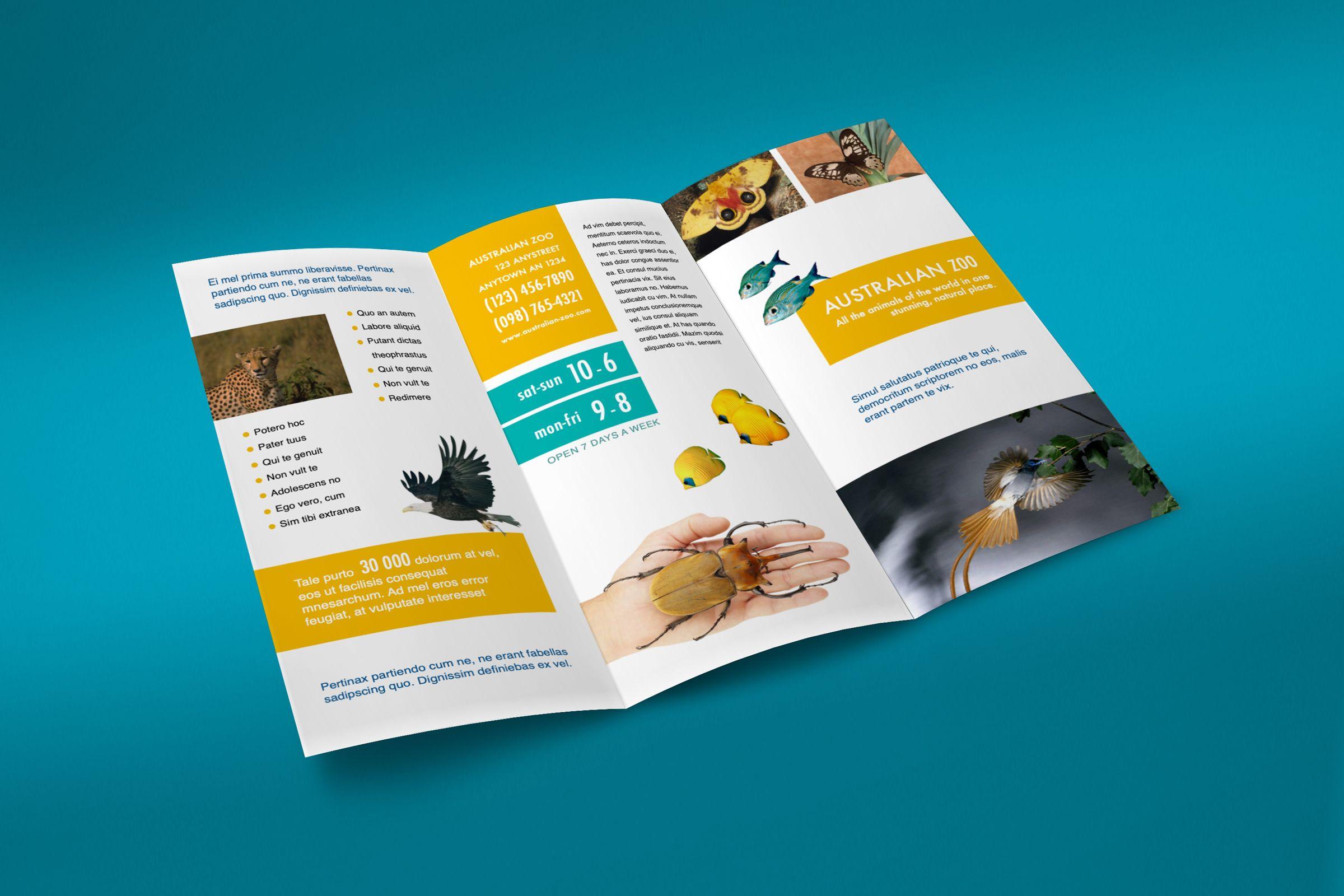 More Brochures Brochure Desktop Publishing Create Flyers