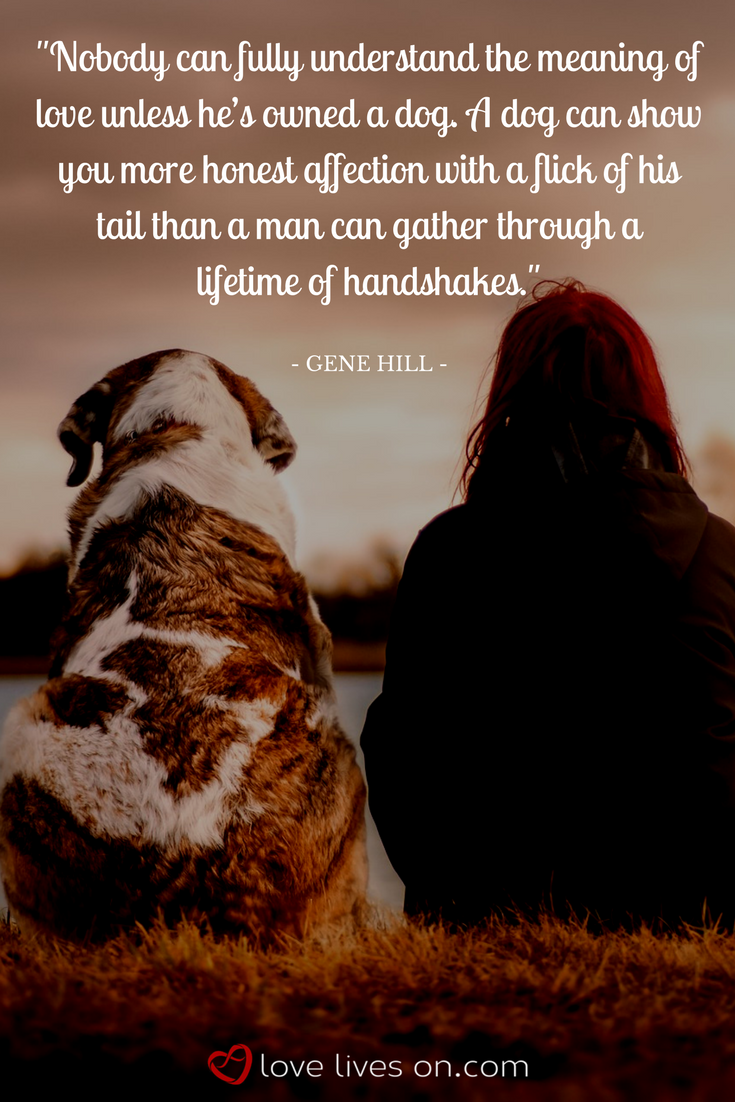 100+ Best Sympathy Quotes | Cookies | Pet loss quotes, Dog ...