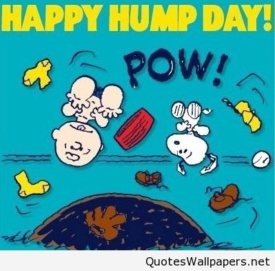 Funny Cartoon Happy Hump Day Saying Messages