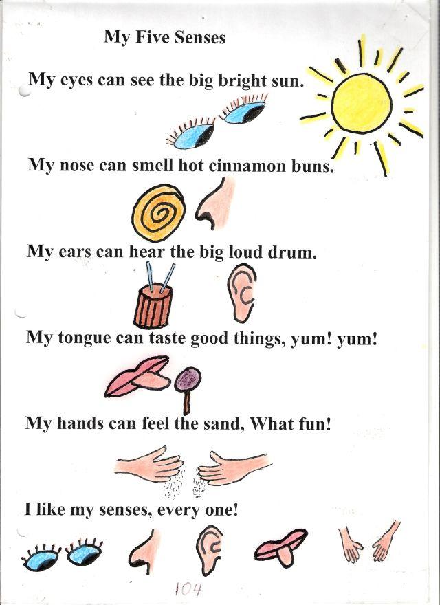 Poem No 4 My Five Senses My Five Senses 5 Senses Preschool Five Senses Preschool