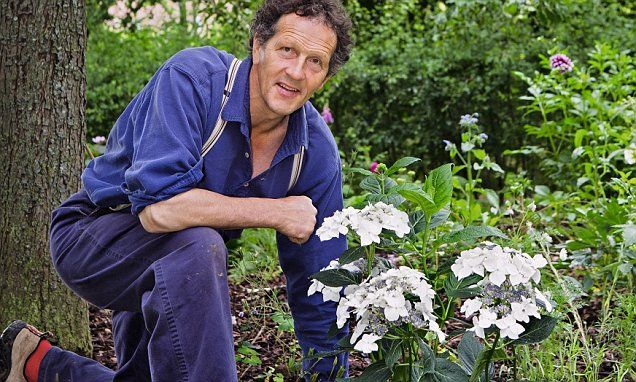 0702b3852ed22ce32afb27057eb07aae - How To Take Hydrangea Cuttings Gardeners World