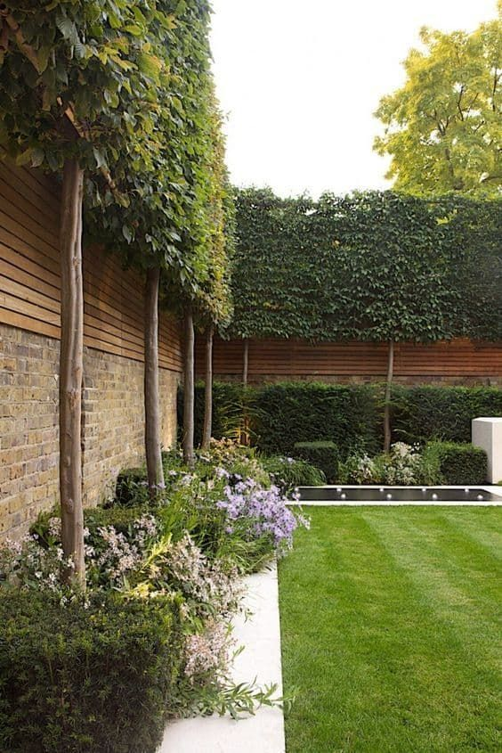 Backyard Fence Design Ideas to Inspire You is part of Narrow garden, Modern garden, Garden privacy, Urban garden, Outdoor landscaping, Garden privacy screen - When it comes to backyard fence design ideas, don't succumb to the ordinary and fence yourself in  Check out our inspiring selection