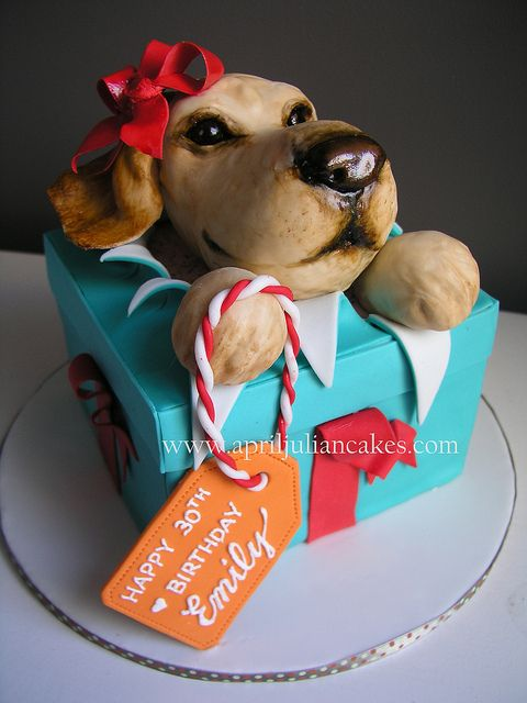 Puppy Birthday Cake For Emilys Big 3 0 By April Julian