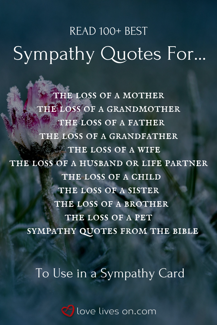 Quotes About Sympathy 100 Best Sympathy Quotes  Condolences Funeral Quotes And Grief