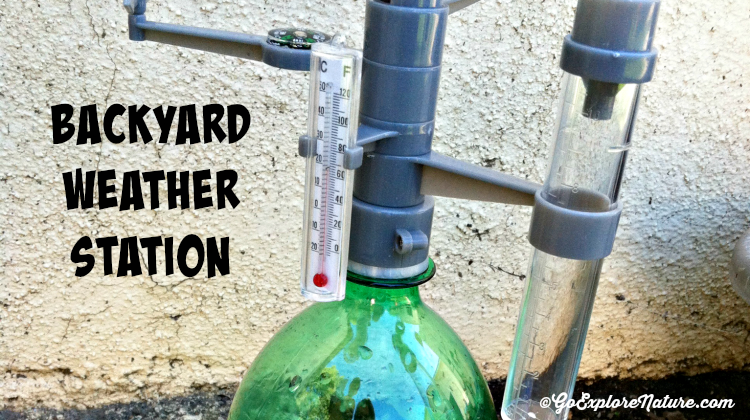 Backyard Weather Station backyard weather station | wind direction, weather and homeschool