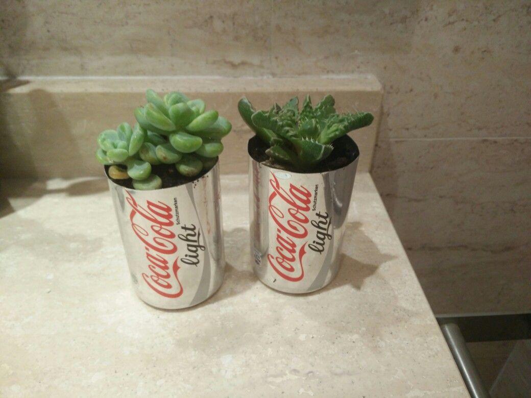 Reutilizar unas latas de cocacola para plantar pequeños cactus ( En este caso para decorar el baño)
