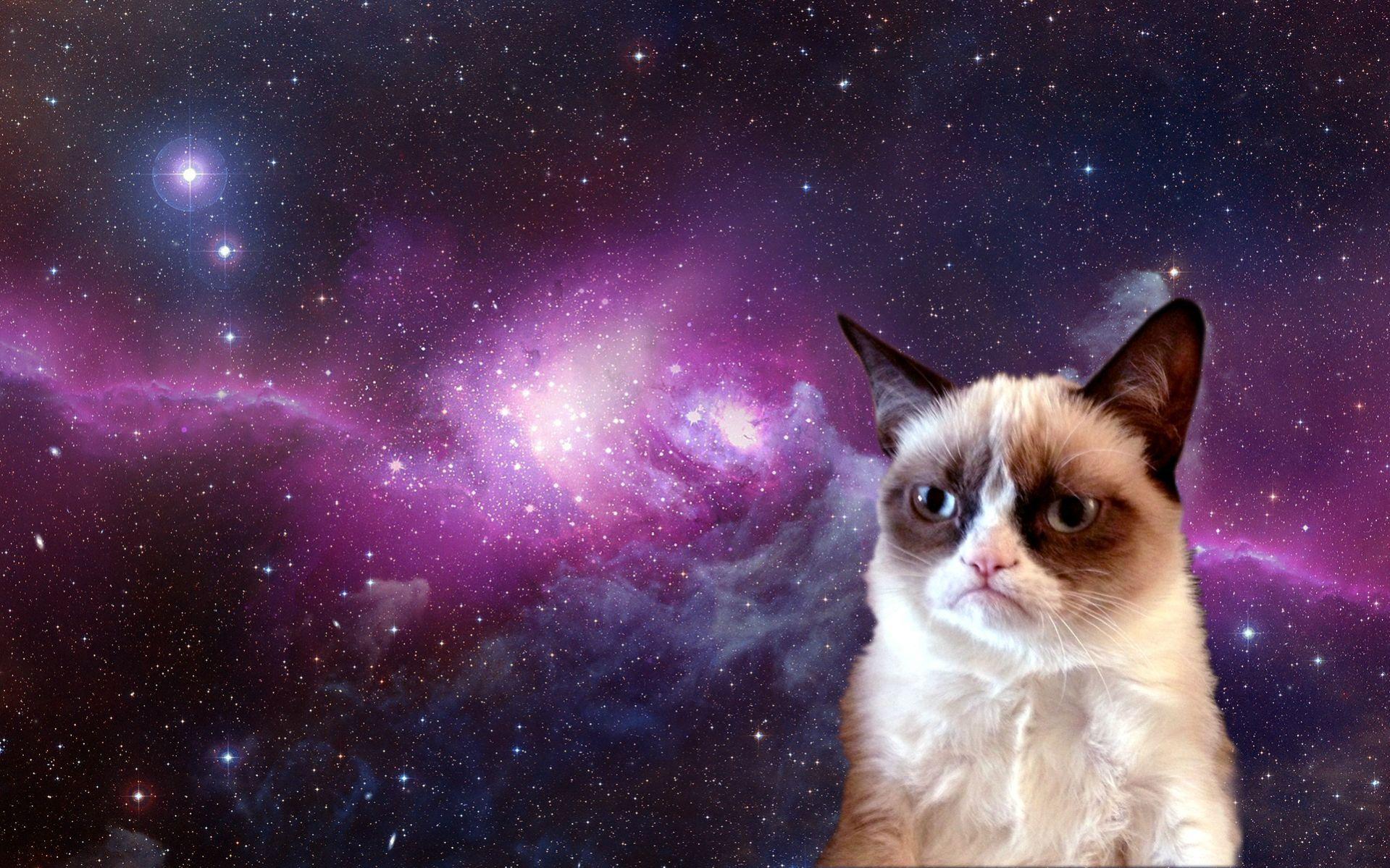 Grumpy Cat in Space [1920x1200] Grumpy cat humor, Cat