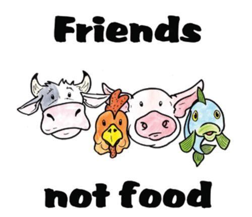 Amigos não comida