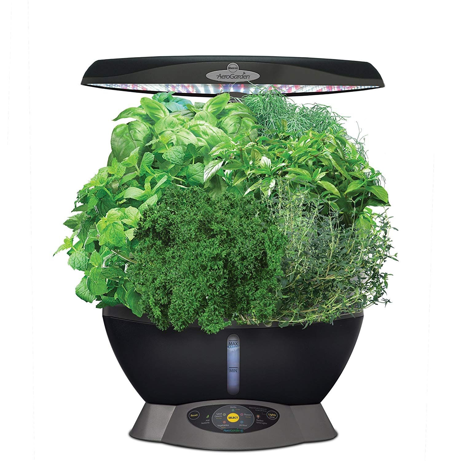 AeroGarden Classic 6 with Gourmet Herb Seed
