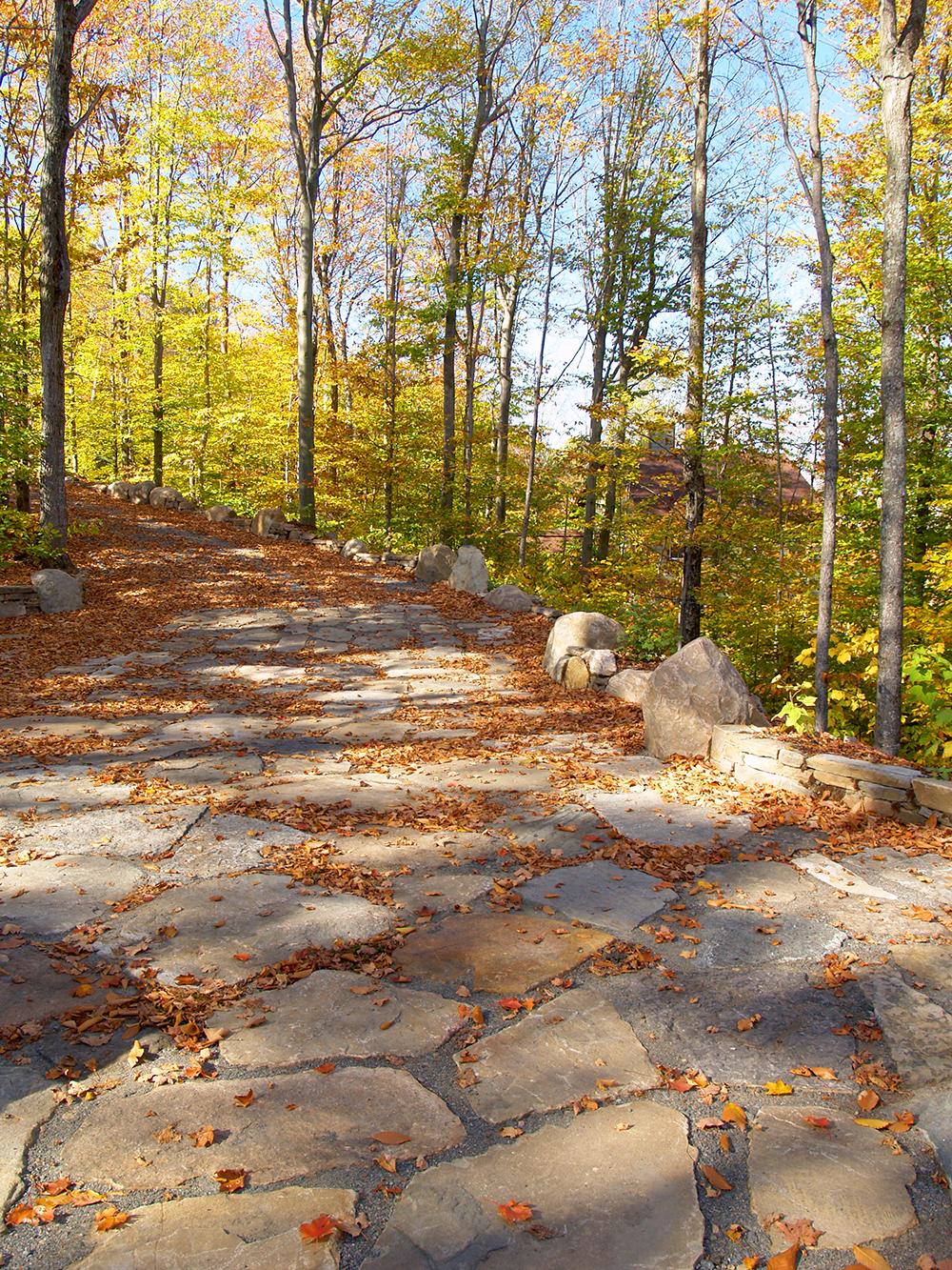 Magnifique chemin de pierres en nature, région des