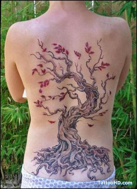 palm-tree-tattoo-pics.jpg (469×644)