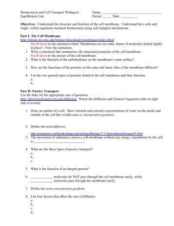 Cellular Transport Worksheet Answer Key 28 [ Skills ...