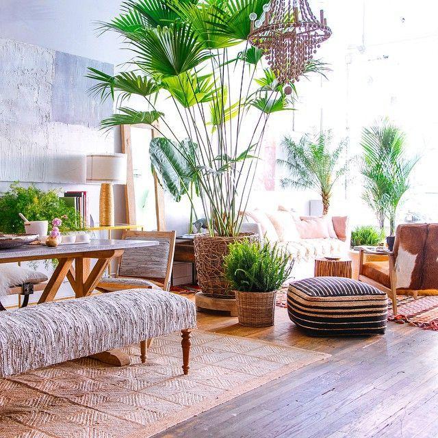 Tropical Home Paradise Style Living E Dream