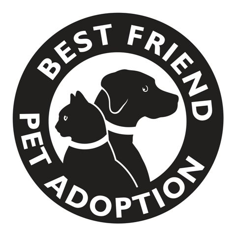 Best Friend Pet Adoption Best Friends Pets Gifts For Pet Lovers Pet Adoption
