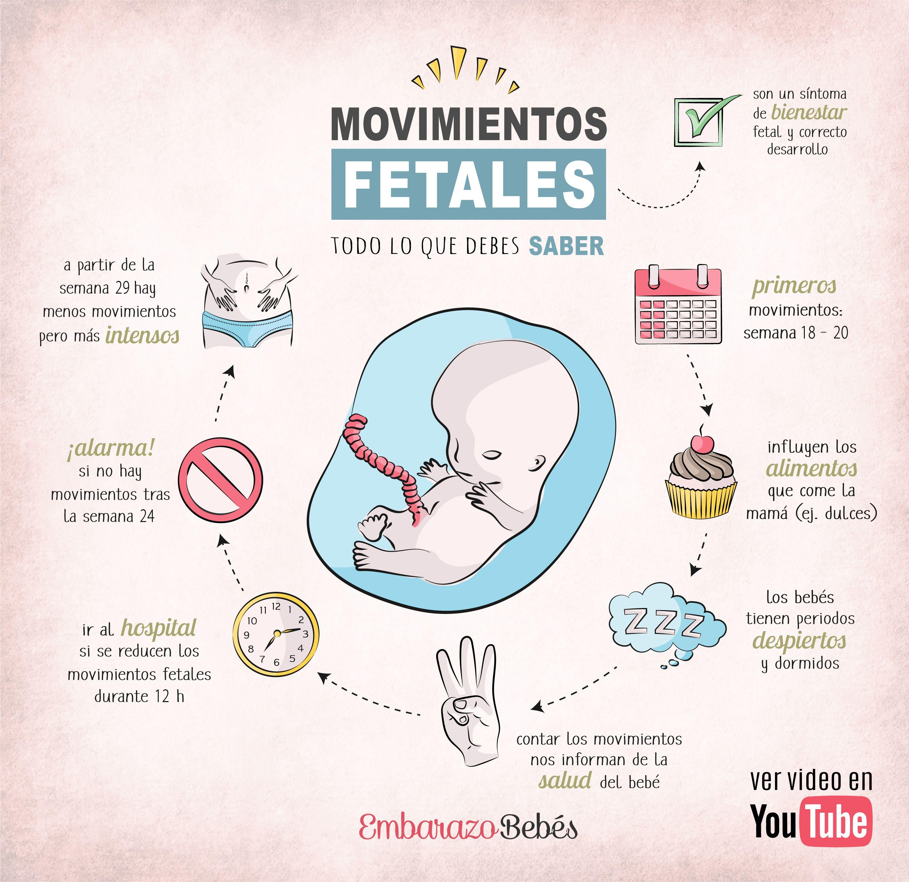 Movimientos Del Bebé En El Vientre Embarazo Divertido Consejos Para El Embarazo Bebé En El Vientre