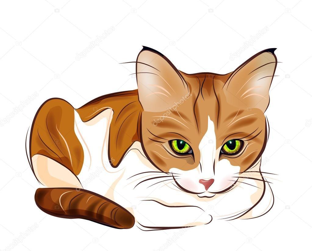 Pin By A Martin On Illustration Cat Vector Tabby Cat Cat Artwork