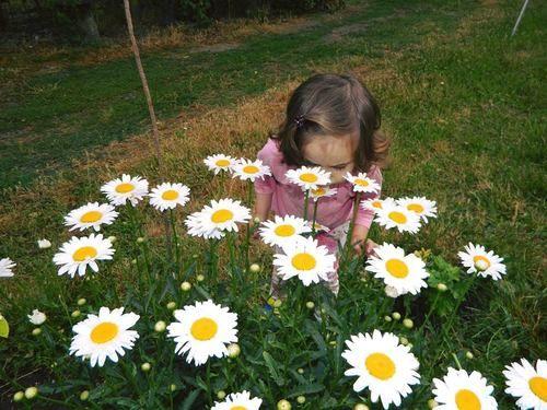 Картинка с тегом «baby, flower, and flowers»   Картинки