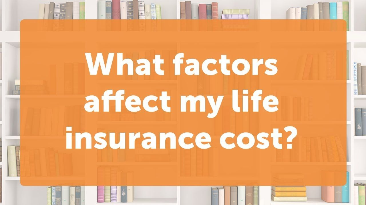 How Much Will I Pay For Life Insurance Life Insurance Companies