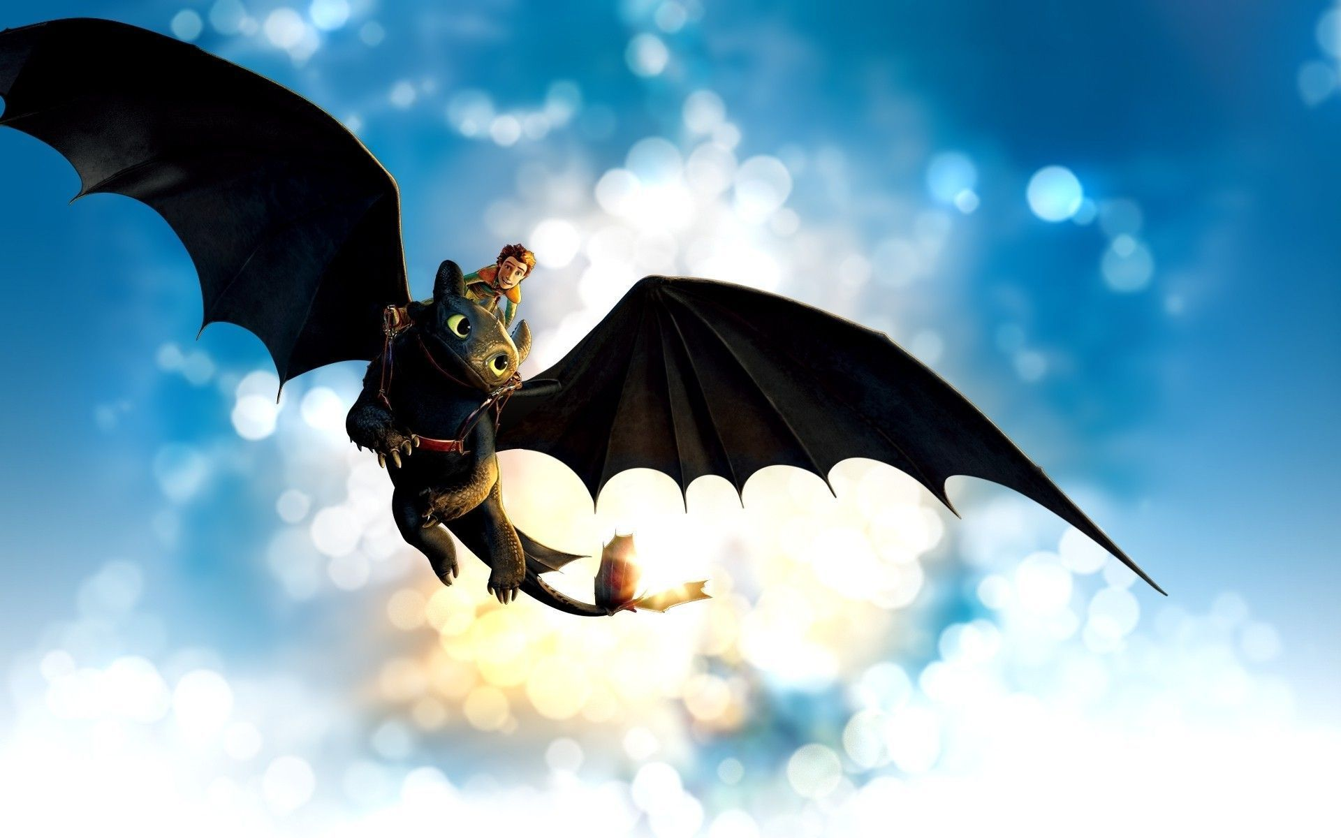 How To Train Your Dragon Hiccup Toothless Wallpapers Hd