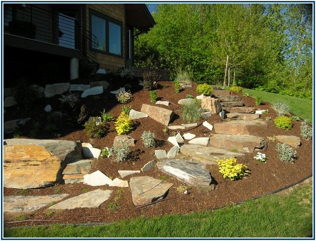 confounded landscaping companies in san antonio tx home landscape