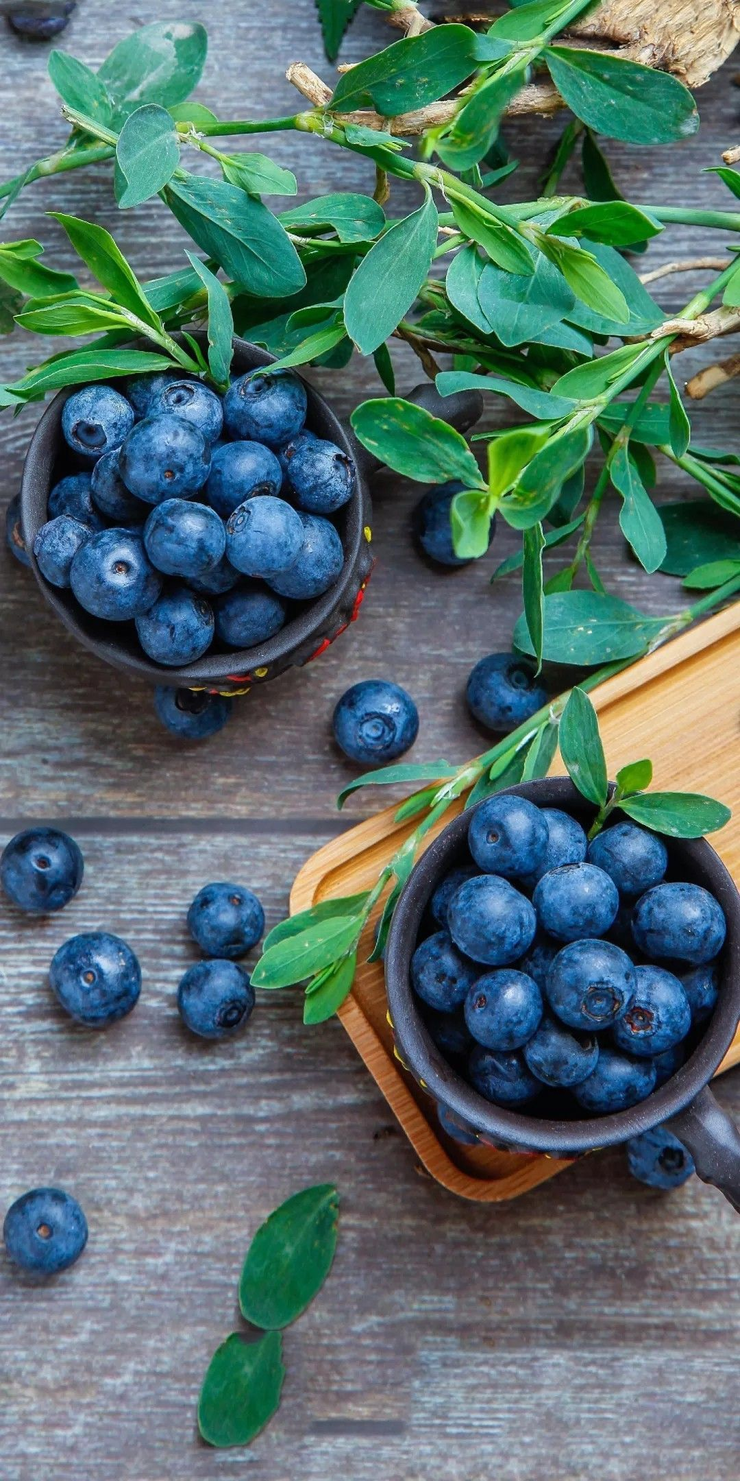 Pin by April ☔️ on BLUEBERRY LANE Healthy fruits