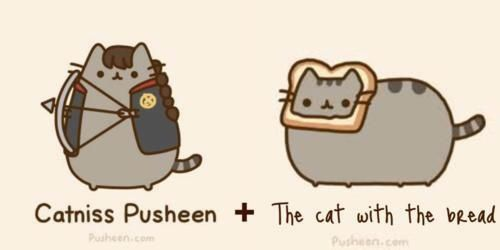 Pusheen + Hunger Games = Catniss & Cat with the Bread
