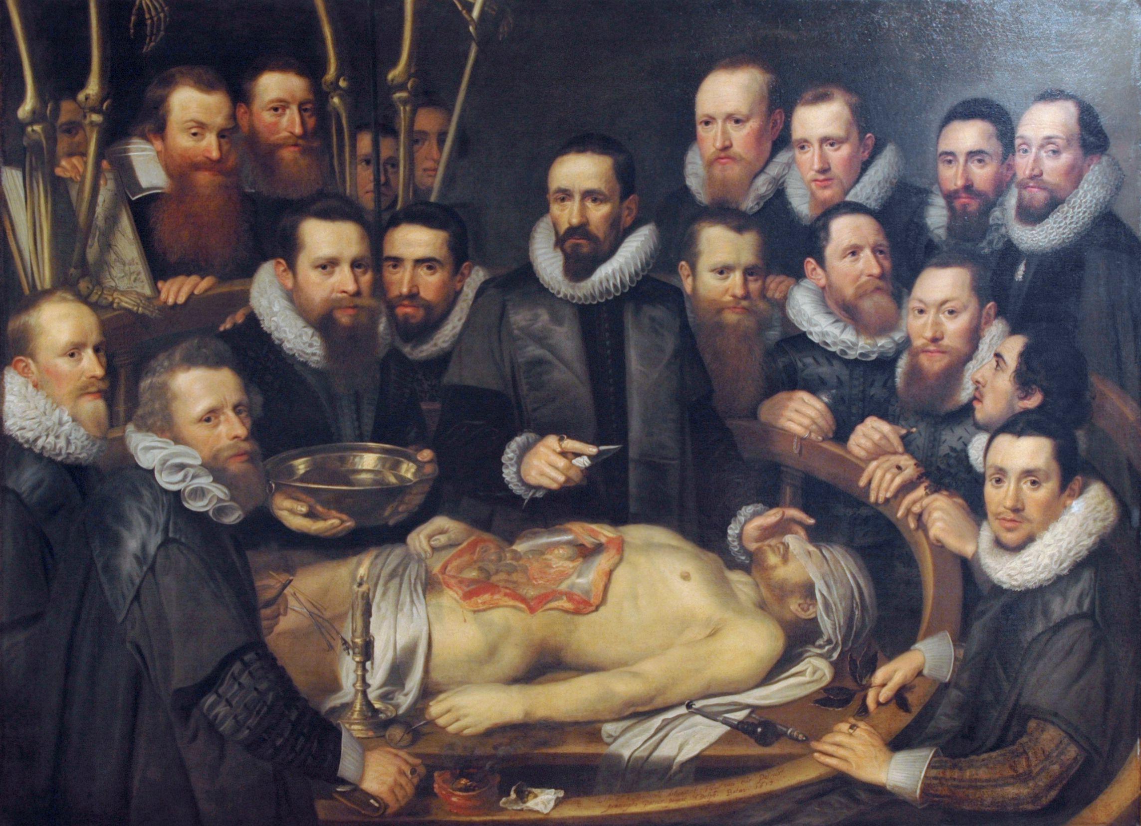 La lección de anatomía del Dr. Willem Van der Meer | Países bajos ...