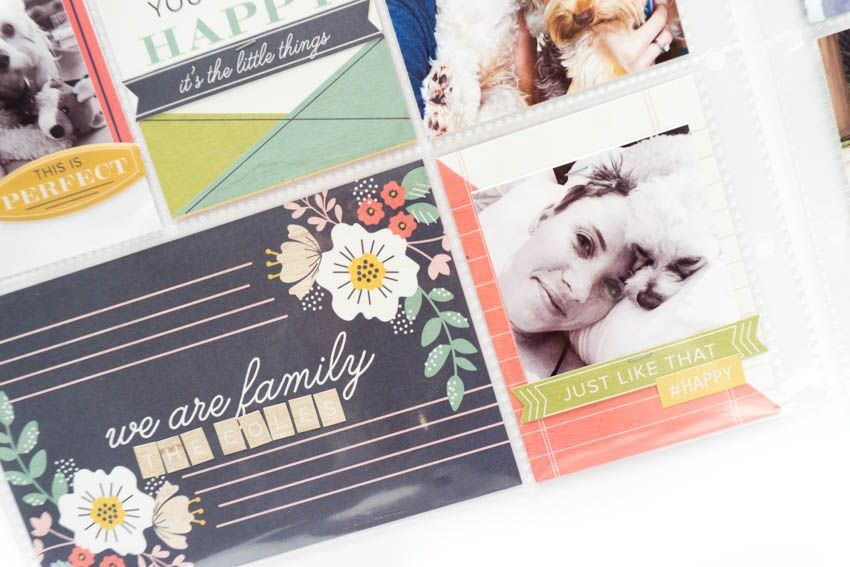 fabulous products & creative inspiration delivered right to your door