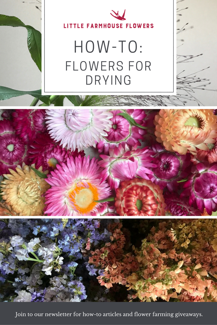 Flowers And Greens For Drying How To Flower Farming Pinterest