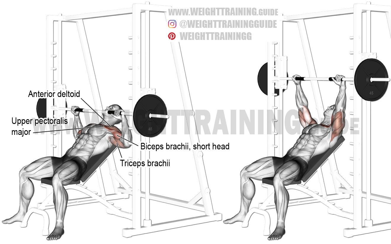 Smith Machine Incline Bench Press Exercise Instructions And Video Bench Press Smith Machine Workout Incline Bench