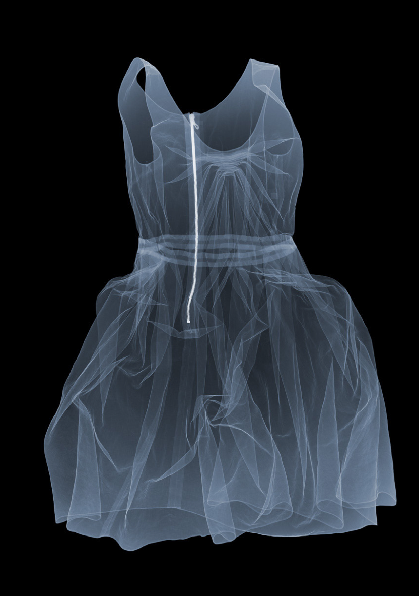 lanvin dress / xray nick veasey Ghost portrait to put in a