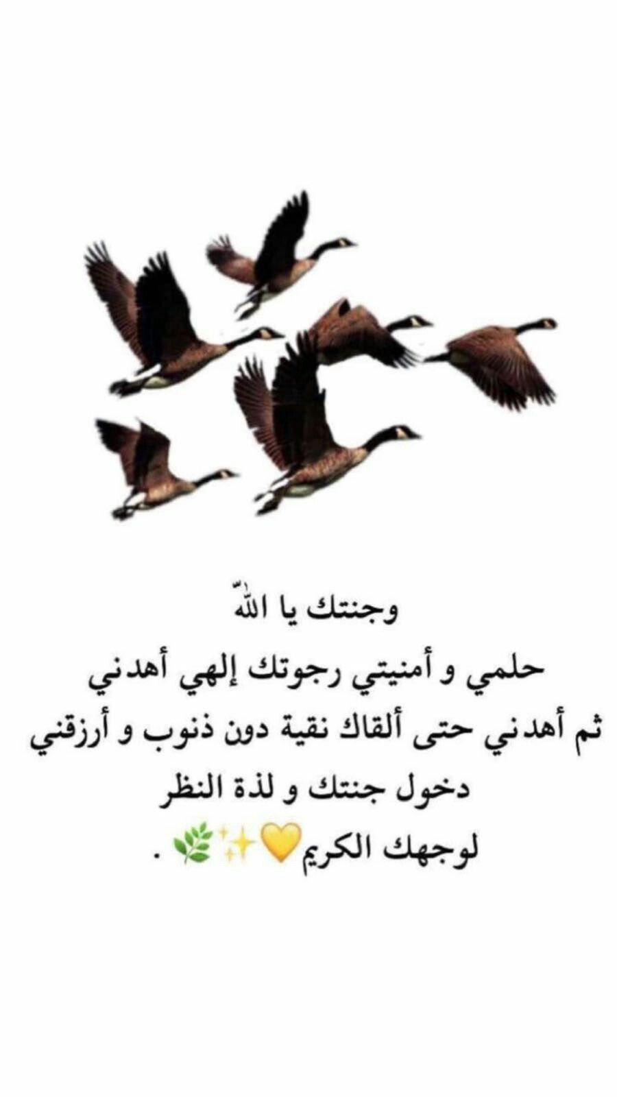 Pin By Leillly On Life With Allah Islamic Quotes Islamic Pictures Arabic Memes