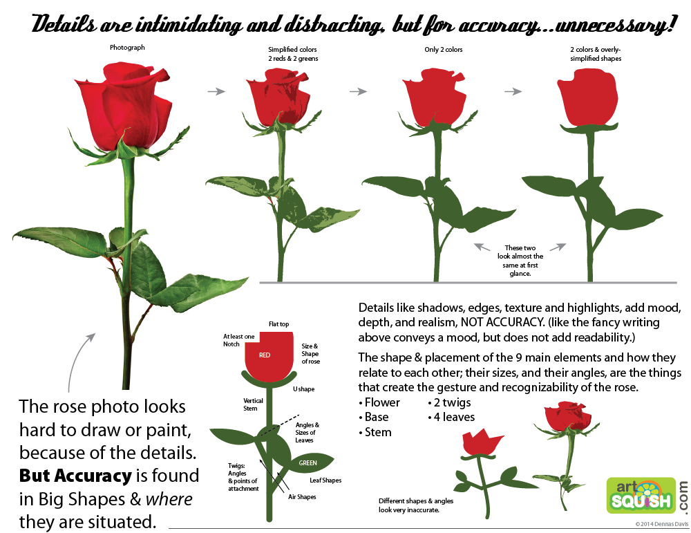Rose Flower Anatomy Flower anatomy, Rose flower, Parts
