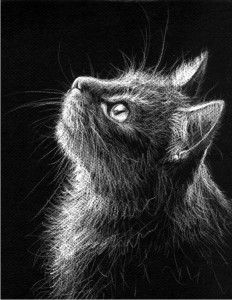 I chose this white media on black paper drawing because it reminded me of my childhood when I would rent out drawing books from the library that included tutorials on how to draw cats and dogs. I like the technique of drawing on black paper because traditionally most drawings start on a white pallet.
