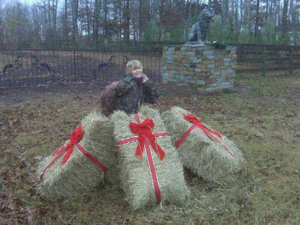 Farm country christmas decor our old hay bales with for Bales of hay for decoration