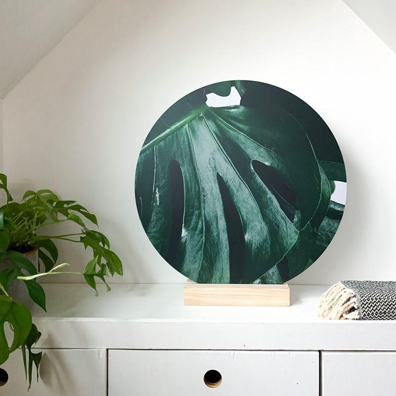 Nieuw De Standaard En Dubbelzijdige Cirkels Dutch Sprinkles Cirkels Decoratie Interieur