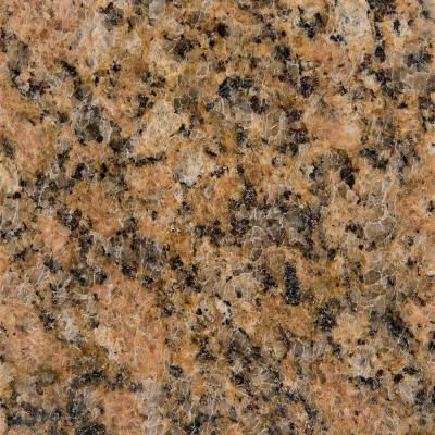 Gold Tan Beige Granite Quartz Solid Surface Countertop Samples Countertops Backsplashes The Home Dep Quartz Countertops Silestone Countertops