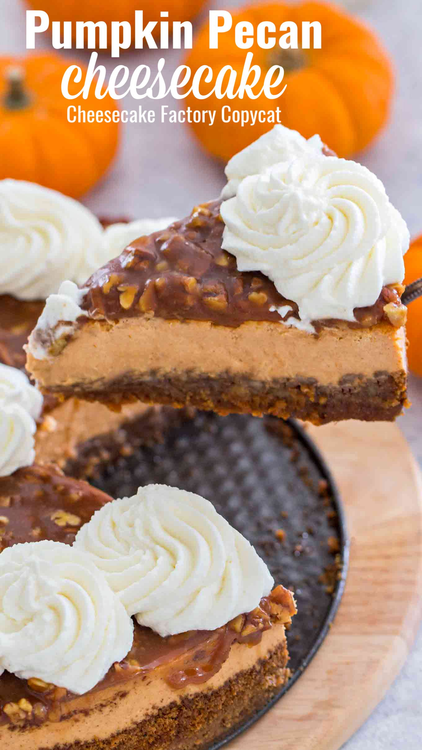 Pumpkin Pecan Pie Cheesecake Recipe Video Sweet And Savory Meals Recipe Pecan Cheesecake Recipes Pumpkin Pecan Cheesecake Pumpkin Cheesecake