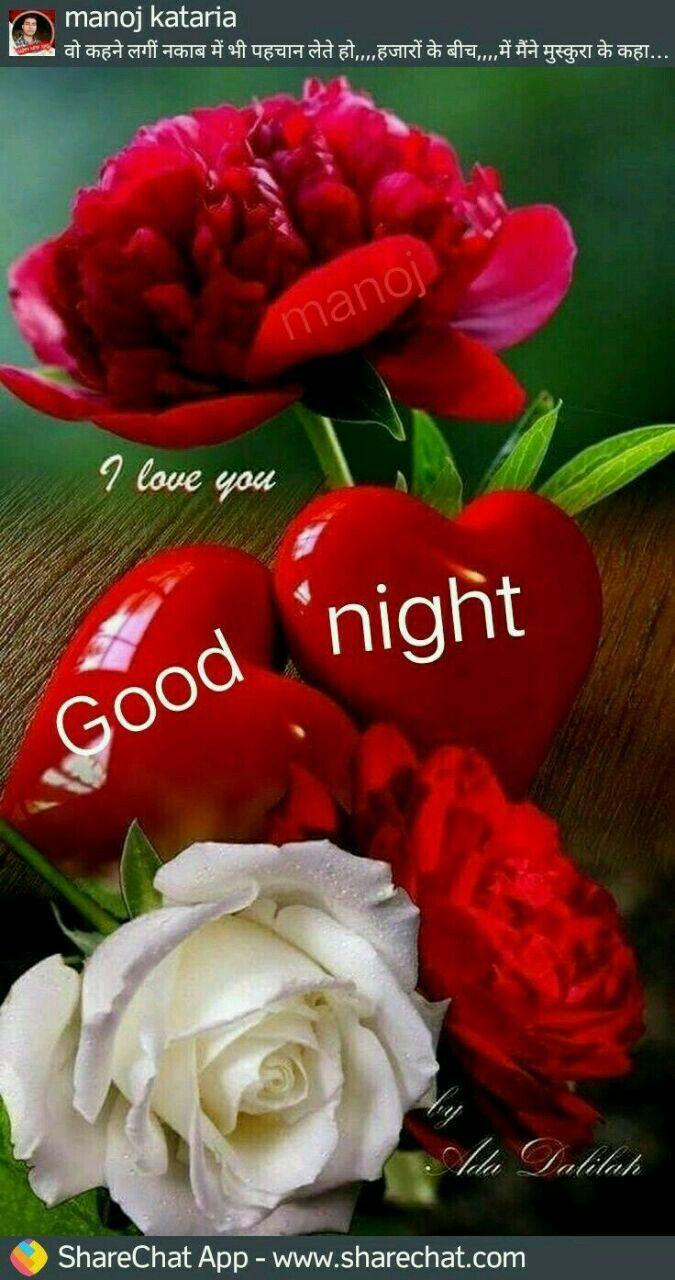 Daygood Night Pinterest Good Night
