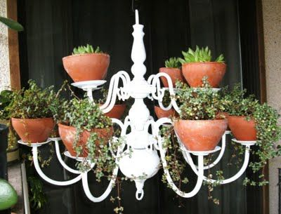 Neat way to reuse a candle chandelier. More info here: http://www.therainforestgarden.com/2011/07/plant-chandelier-and-other-ideas.html