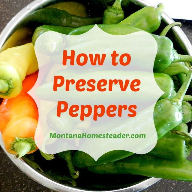 How to Preserve Peppers | Montana and Pepper