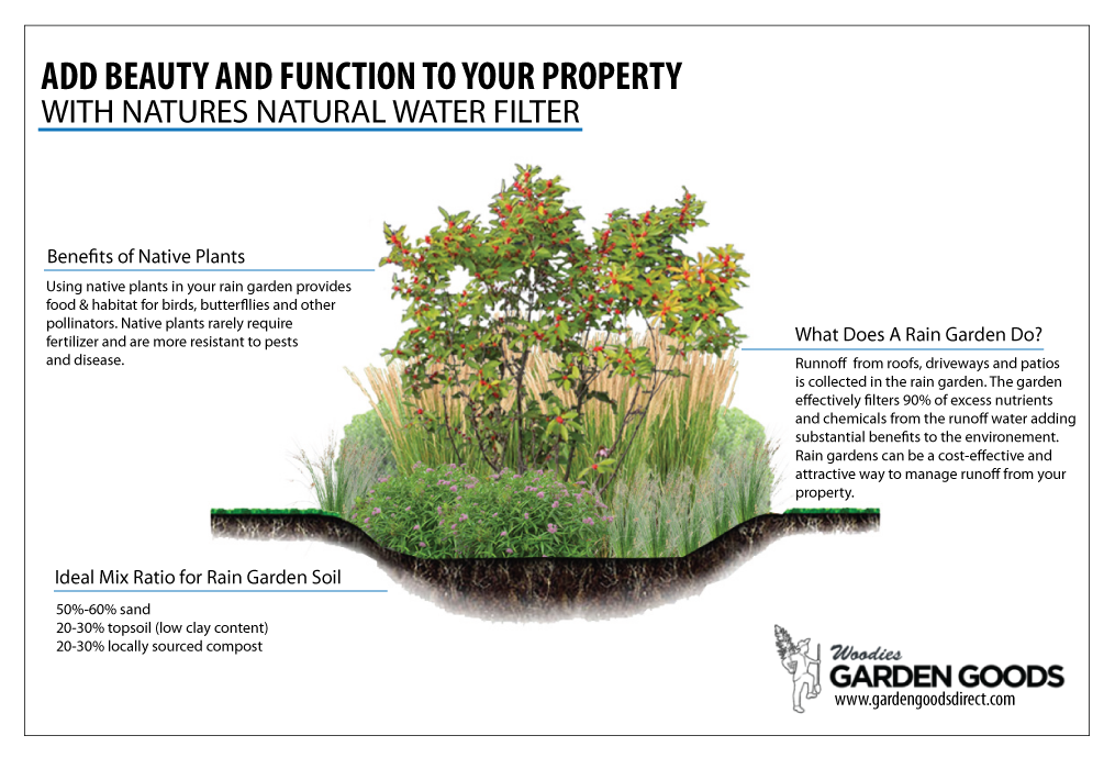 Rain gardens are amazing! When properly planted with