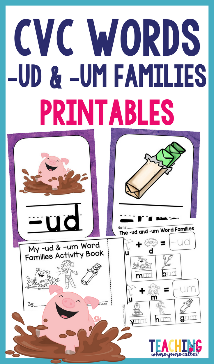 Help Your Students Learn Their Cvc Words With This Printable Activity Pack These Activities Help Stud Word Family Activities Word Families Phonics Instruction [ 1250 x 735 Pixel ]