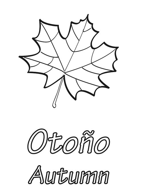 Hojas de otoño para colorear | otoño | Pinterest