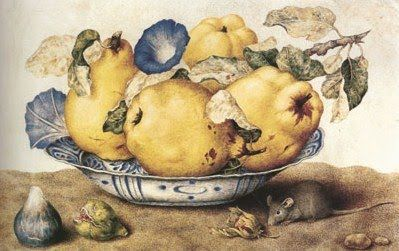 """Giovanna Garzoni (Italian Baroque Era Painter, 1600-1670) Ceramic Bowl of Pears and Morning Glories c 1651"" http://bjws.blogspot.se/search/label/Creatures"
