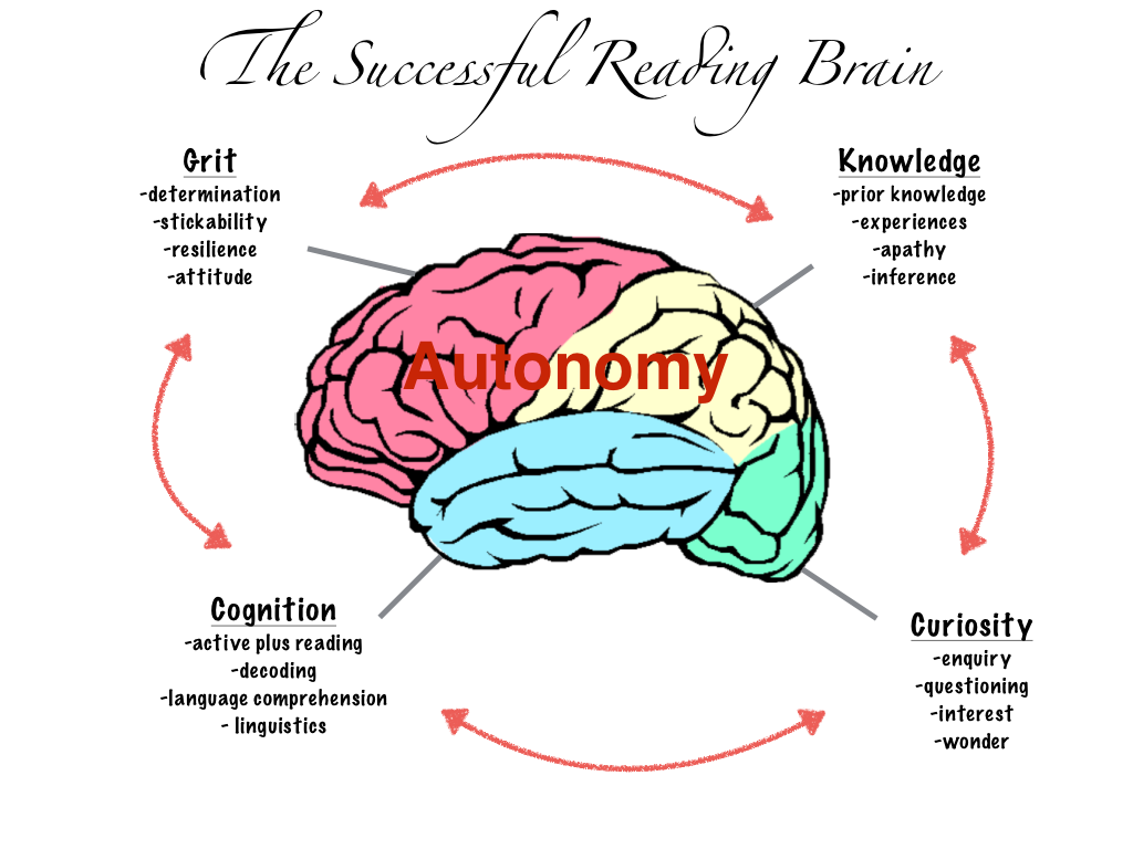 Diagram Of Brain Reading Information Of Wiring Diagram